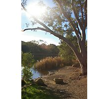 A quiet morning at Golden Point Reservoir Photographic Print