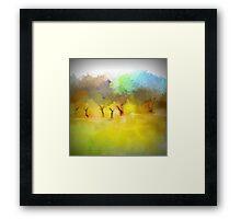 Soft Mornings Landscape Framed Print