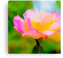 Macro Flower Photograph Canvas Print