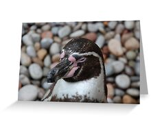 Penguin in Paradise Greeting Card