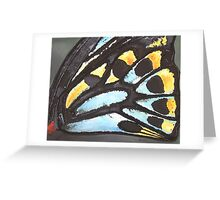 Cairns Butterfly Greeting Card