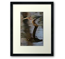 Patience for Two Framed Print