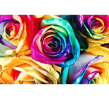 Happy Roses Photographic Print