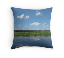Yellow River Mirror Throw Pillow