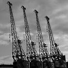 Bristol Cranes by Sandra Mangnall