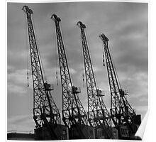 Bristol Cranes Poster