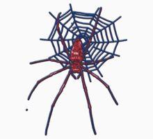 Spider by docdoran
