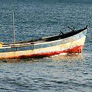 fishing by Kent Tisher