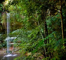 Waterfall, Lambir National Park, Sarawak, Borneo by Trishy