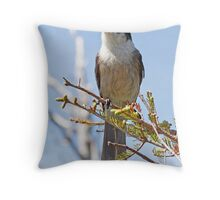 Observer: Gray Jay Throw Pillow