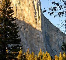 Majestic El Capitan by Kendra