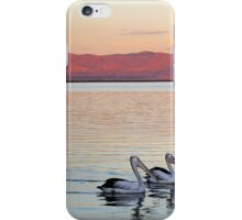 Magic Moments - Pelican Sunset iPhone Case/Skin