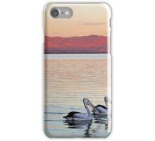 Magic Moments - Pelican Sunset iPhone Case/Skin