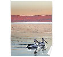 Magic Moments - Pelican Sunset Poster