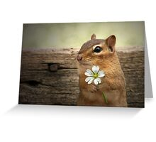 WELCOME SPRING! Greeting Card