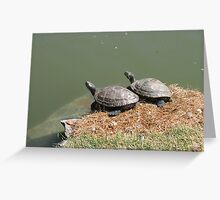 On your mark, get set... Greeting Card