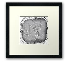 Scratching the Surface Framed Print