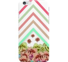 Modern Pink Teal Mint Green Chevron Floral Peonies iPhone Case/Skin