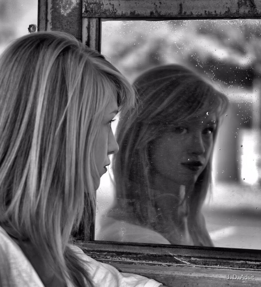 Mirror Mirror on the Garage by J. D. Adsit