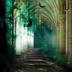 Enchanted Passage by Amy Lowe