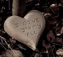 I GIVE you my all by AFogArty