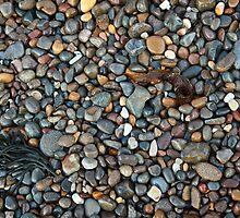 Pebble beach by Chris Cobern