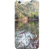 The lake, Belair National Park, South Australia. iPhone Case/Skin