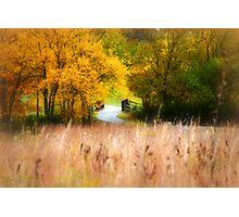 The Winding Prairie Path Photographic Print