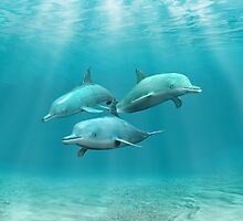 Swimming Dolphins by BailoutIsland