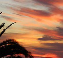 Fingers of fire sunset. by elphonline
