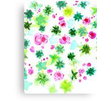 Pops of Pink Succulents Canvas Print