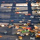 The Bridge of Autumn by Brian Gaynor
