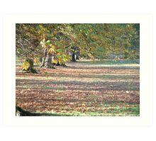 Autumnal Yorkshire Art Print