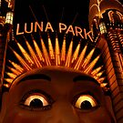 LUNAcy - luna park at night by mellychan