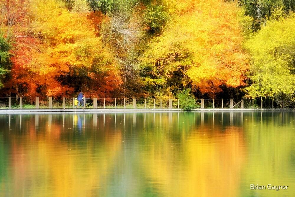 Fall at Lake Loon by Brian Gaynor