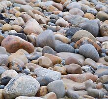 Rocky Seashore by Dandelion Dilluvio