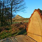 Roseberry Topping, North Yorkshire by Funkylikeabee