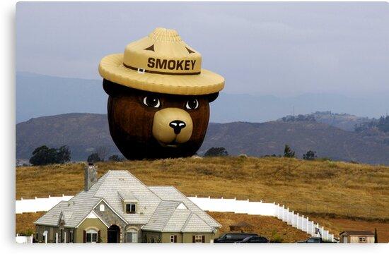 Smokey by Anne Smyth