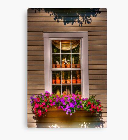 window for chris Canvas Print