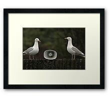 Was That Another Rain Check? Framed Print