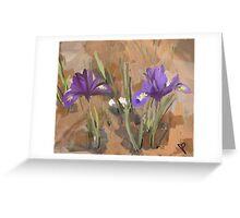 Two Blooming Iris Greeting Card