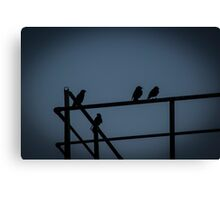 A Few Irish Birds Canvas Print
