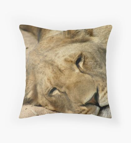 Midday ZZZ Z Z's Throw Pillow