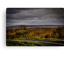 The Burren, Co. Clare, Ireland Canvas Print