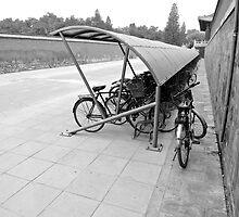 Bike Shelter Forbidden City by Mark Chevalier