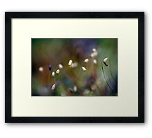 Aliens of Nature Framed Print