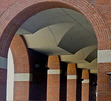 Arches by Joy  Rector