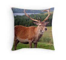 Stag - Scotland Throw Pillow