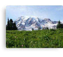 Mt. Rainier Canvas Print