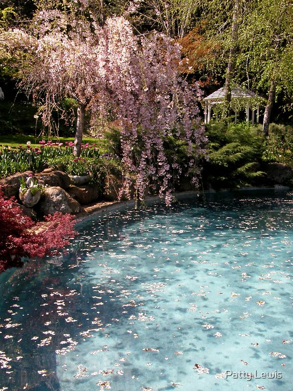 Ananda's Garden by Patty Boyte